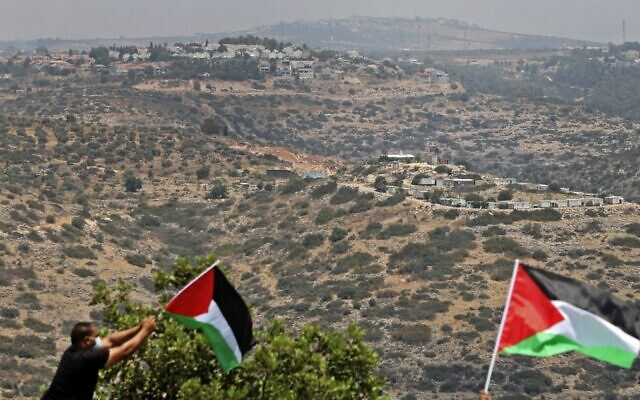 Palestinian demonstrators wave national flags during a protest in the West Bank town of Biddya on July 6, 2020. (JAAFAR ASHTIYEH / AFP)