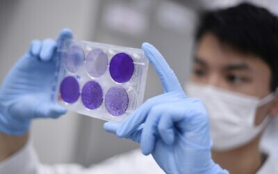A researcher works on virus replication in order to develop a vaccine against COVID-19, in Belo Horizonte, Brazil, March 26, 2020. (Douglas Magno/AFP)