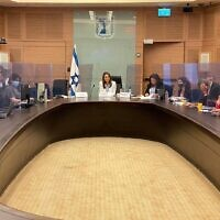 MK Yifat Shasha-Biton chairing the Knesset Coronavirus Committee on June 17, 2020. (Instagram)