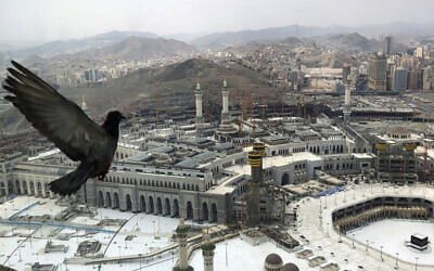 A pigeon flies over the site of the Grand Mosque that is empty due to the coronavirus prevention procedures, on the first day of the annual hajj that normally draws millions of faithful, in the Muslim holy city of Mecca, Saudi Arabia, July 29, 2020. (AP Photo)