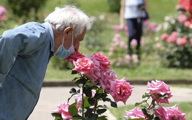 A man smells a rose in a park in Rome on May 19, 2020. (Mauro Scrobogna/LaPresse via AP)