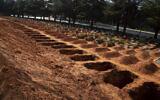 Freshly-dug graves in a row at Johannesburg's main Westpark Cemetery, Thursday, July 9, 2020.(AP Photo/ Denis Farrell)