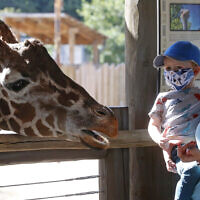 Louie Brown and her son Nico, 3, feed a giraffe as they wear their masks at Utah's Hogle Zoo Thursday, July 30, 2020, in Salt Lake City. (AP Photo/Rick Bowmer)