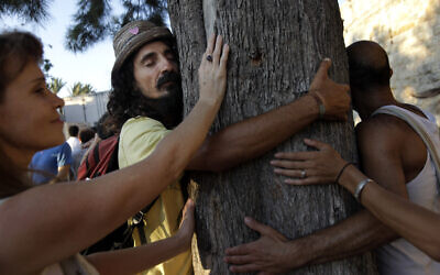 Illustrative: People hug trees and hold hands in front of the Old City of Jerusalem on July 03, 2011. (Miriam Alster/Flash90)