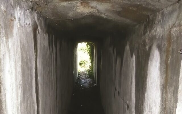 The tunnel which connected the Sylt concentration camp commandant's house to the camp proper. (Centre of Archaeology, Staffordshire University/ via Antiquity Publications)