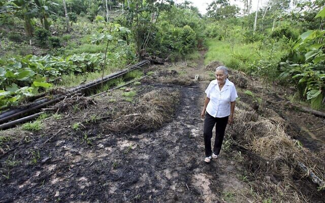 FILE - In this July 30, 2006 file photo, Mariana Jimenez walks on her farm where burst oil pipes contaminated her land earlier in the month near Lago Agrio, in Ecuador's Amazon region. Late Tuesday, July 10, 2018, Ecuador's highest court upheld a $9.5 billion judgment against oil giant Chevron for decades of rainforest damage that harmed indigenous people.  (AP Photo/Lou Dematteis, File)