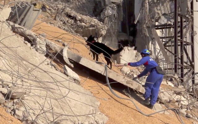 In this photo taken from footage provided by the Russian Emergency Situations Ministry press service, a Russian Emergency Situations employee works with his sniffer dog on the site of the explosion in the port of Beirut, Lebanon, August 6, 2020. (AP Photo/Ministry of Emergency Situations press service via AP)