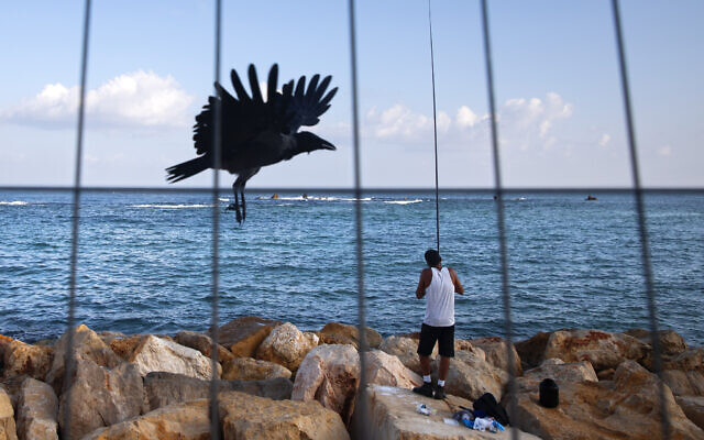 A fisherman casts his rod at the Mediterranean Sea shore during a three-week nationwide lockdown, in Tel Aviv, Sept. 26, 2020. (AP Photo/Oded Balilty)