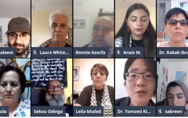 Panelists at webinar organized by the Arab and Muslim Ethnicities and Diasporas Studies Department at San Francisco State University on September 22, 2020. (Screen capture/YouTube)