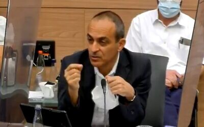 Prof. Ronni Gamzu addresses Knesset Constitution Committee, September 6, 2020 (Screen grab)