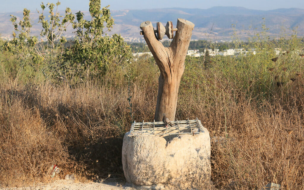 The opening of a cistern at the Givat Titora archaeological garden. A pail and bucket would have hung from the tree when the water source was in use. (Shmuel Bar-Am)