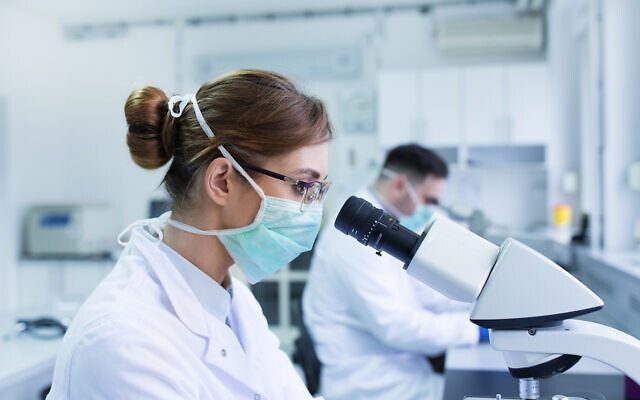 Illustrative: Team of biologists working with microscopes in a laboratory (Jevtic; iStock by Getty Images)