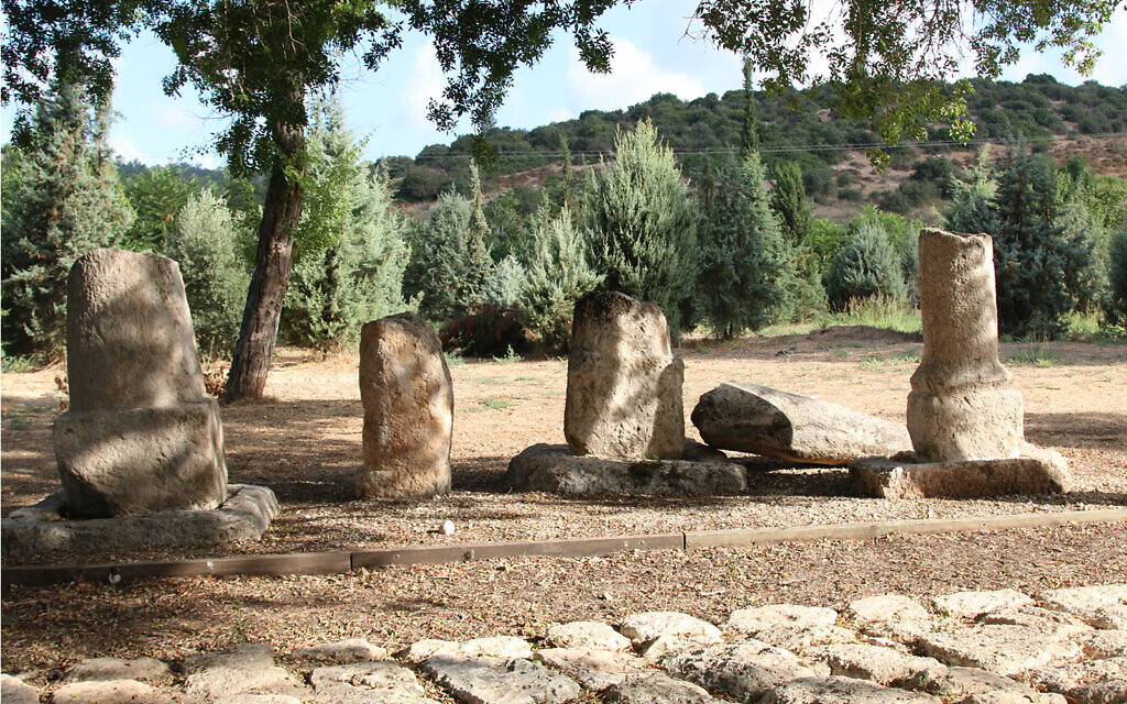 Heavy Roman-era milestones, two of them inscribed, at the Givat Yeshayahu archaeological garden. They were brought to the site after cranes extracted them from along today's Highway 38. (Shmuel Bar-Am)