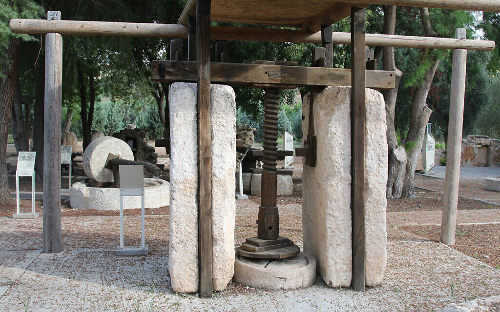 An ancient screw press in Givat Yeshayahu's archaeological garden, which is situated in a forest in central Israel. (Shmuel Bar-Am)