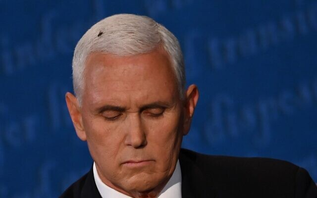 A fly rests on the head of US Vice President Mike Pence as he takes notes during the vice presidential debate against US Democratic vice presidential nominee and Senator from California Kamala Harris in Kingsbury Hall at the University of Utah on October 7, 2020, in Salt Lake City, Utah. (Eric BARADAT / AFP)