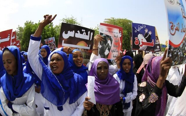 Illustrative: Sudanese protestors shouting slogans during a rally in the capital Khartoum to denounce Israel's military offensive on the Gaza Strip, August 11, 2014. (Ashraf SHAZLY / AFP / File)
