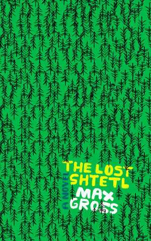 The Lost Shtetl' by Max Gross (HarperCollins)