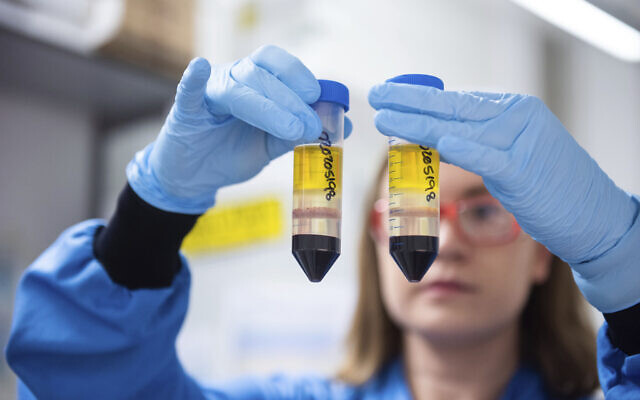 Aa researcher in a laboratory at the Jenner Institute in Oxford, England, works on the coronavirus vaccine developed by AstraZeneca and Oxford University, November 23, 2020. (University of Oxford/John Cairns via AP, File)