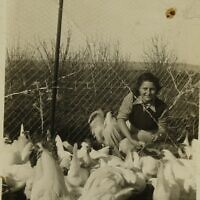 Hannah Senesh with chickens on Mosha Nahalal, part of the Hannah Senesh Collection that is now part of Israel's National Library (Courtesy National Library of Israel)