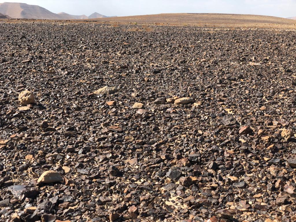 Flint strewn across the plateau on top of Mount Karkom. (Sue Surkes/Times of Israel)