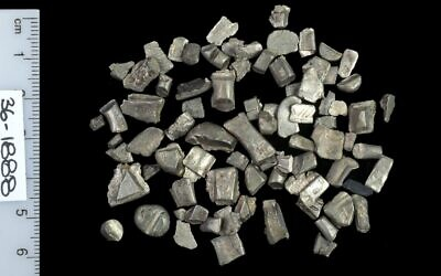 Silver cuts from ingots used for trade prior to currency minting. (Clara Amit/Israel Antiquities Authority)