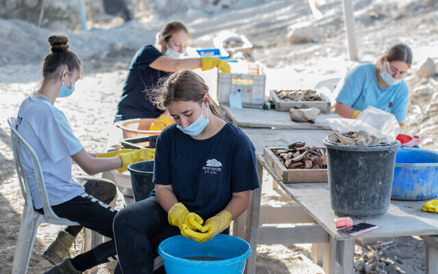 Beit Harel pre-military program students washing finds at the Beit Nattif archaeological excavation. (Yoli Schwartz/Israel Antiquities Authority)