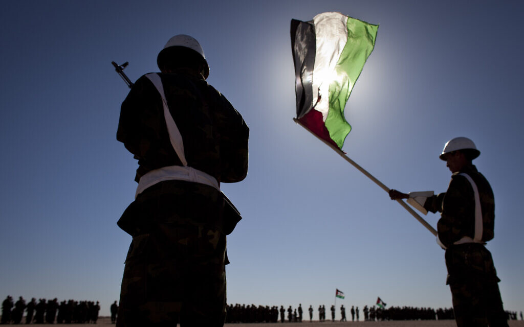 Pro-independence Polisario Front rebel soldiers are seen during a military parade in the Western Sahara village of Tifariti, February 27, 2011 to celebrate the 35th anniversary of the Sahrawi Arab Democratic Republic. (AP Photo/Arturo Rodriguez)