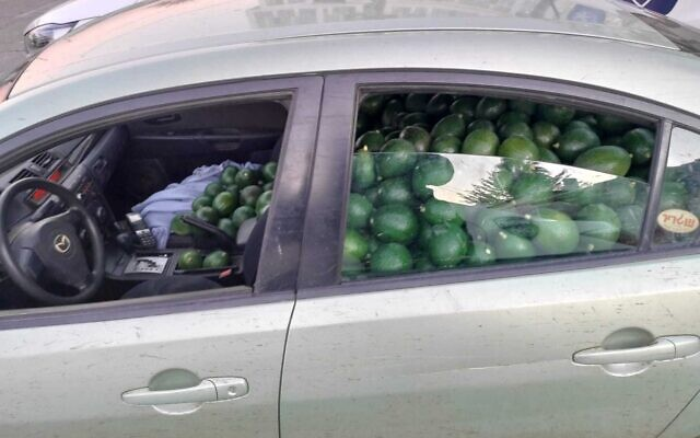 A car packed with stolen avocados, December 26, 2020 (Israel Police)