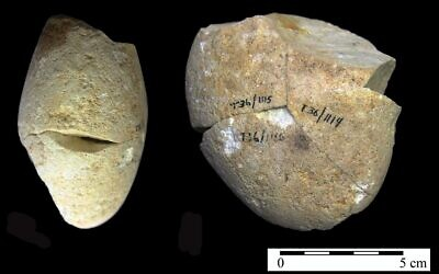 A stone abrasion tool, dated to be some 350,000 years old, that was found in the Tabun Cave in Mount Carmel. (University of Haifa)