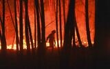 Illustrative: A firefighter is silhouetted against a fire burning outside the village of Roqueiro, near Oleiros, Portugal, September 14, 2020 (AP Photo/Sergio Azenha, File)