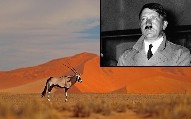 Main photo: An antelope in Sossusvlei, Namibia (Ondrej Prosicky; iStock by Getty Images); Small frame: Nazi leader Adolf Hitler in June 1933 (AP Photo)