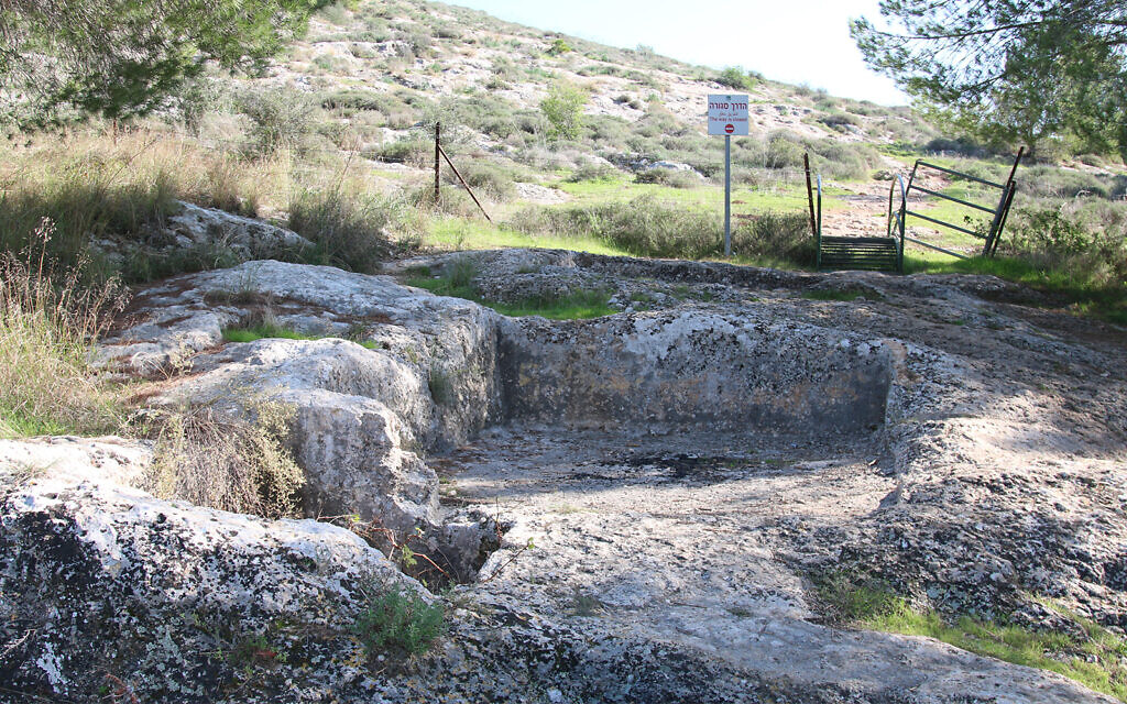 An ancient wine press in the Ayalon Canada Park outside Modiin. The 2-acre park hosts a variety of archaeological sites and nature trails. (Shmuel Bar-Am)