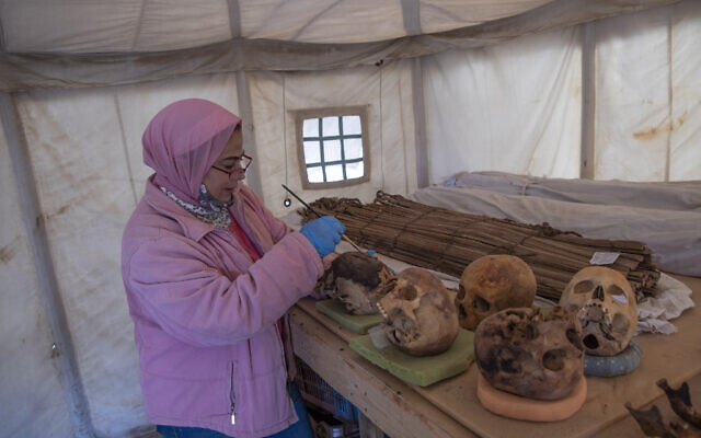 An archaeologist brushes ancient skulls for the media on display that Egyptian archaeologist Zahi Hawass and his team unearthed in a vast necropolis filled with burial shafts, coffins and mummies dating back to the New Kingdom 3000 BC, January 17, 2021, in Saqqara, south of Cairo, Egypt. (AP Photo/Nariman El-Mofty)