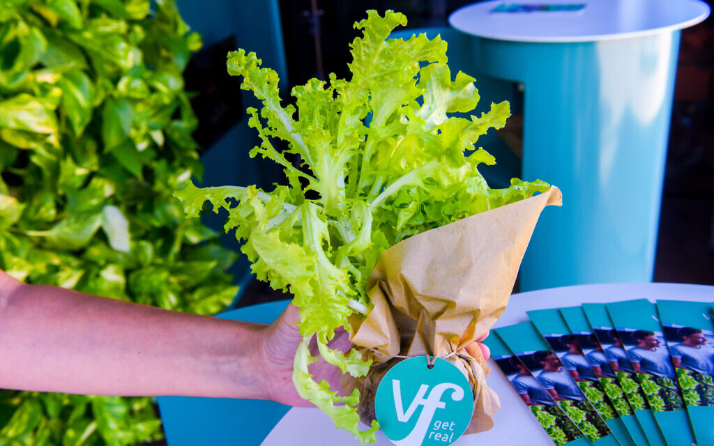 Israel's Vertical Field inks deal to deploy its farming system in UAE