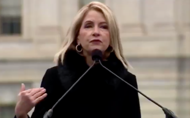 Rep. Mary Miller speaks at a pro-Trump DC rally against certifying the election results on January 5, 2020. (Screen capture/Twitter)
