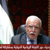 Palestinian Authority Foreign Minister Riyad al-Maliki addresses the United Nations Security Council on January 26, 2021 (screenshot: Palestine TV)