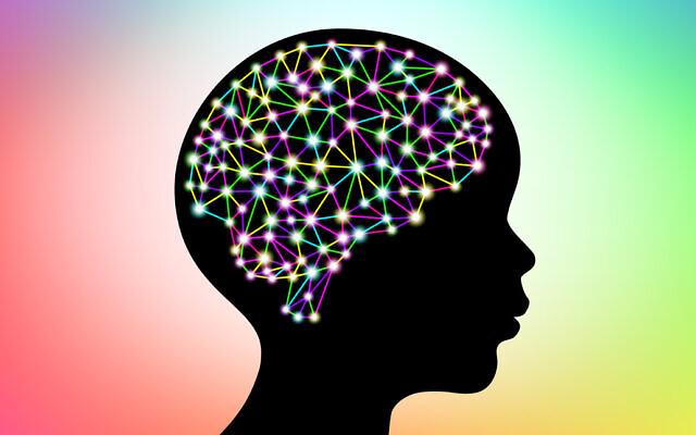 Illustration of a human brain (apagafonova via iStock by Getty Images)