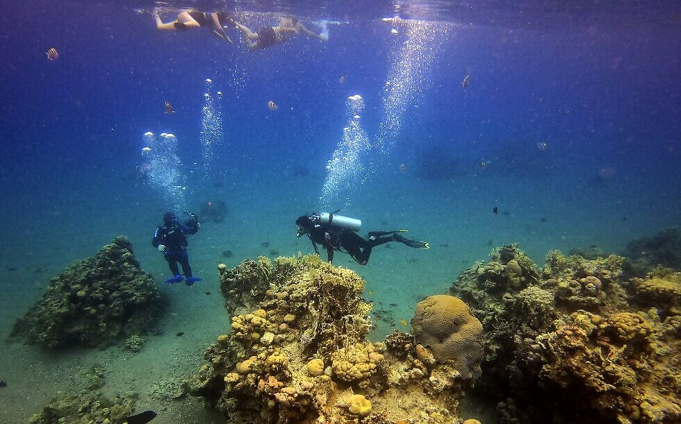 Scuba divers approach a coral reef while on a dive in the Red Sea waters off the coast of Israel's southern port city of Eilat on February 9, 2021. (MENAHEM KAHANA / AFP)