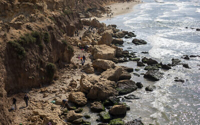 People clean tar from an oil spill in the Mediterranean sea in Gador nature reserve near Hadera, Israel, Saturday, Feb. 20, 2021.  (AP Photo/Ariel Schalit)