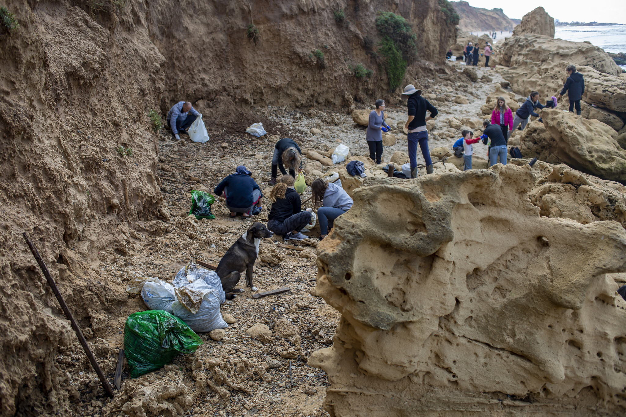 People clean tar from an oil spill in the Mediterranean sea in Gador nature reserve near Hadera, Israel, Feb. 20, 2021. (AP Photo/Ariel Schalit)