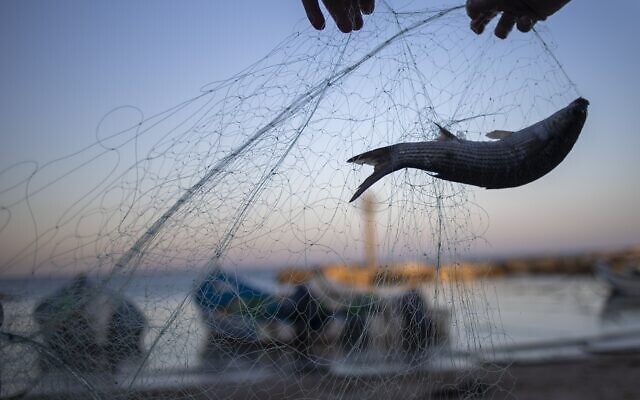 Fishermen remove fish from nets after returning from a fishing trip on the Mediterranean Sea, in the Israeli Arab village of Jisr az-Zarqa, in the early morning of Thursday, Feb. 25, 2021 (AP Photo/Ariel Schalit)