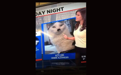 Alena Lee gave a shoutout to 'Kitler' on her Saturday night weather broadcast, February 14, 2021. (Screen shot from YouTube)