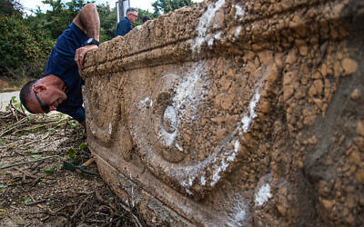 1,800-year-old sarcophagus discovered at the Ramat Gan Safari Park (Israel Antiquities Authority)