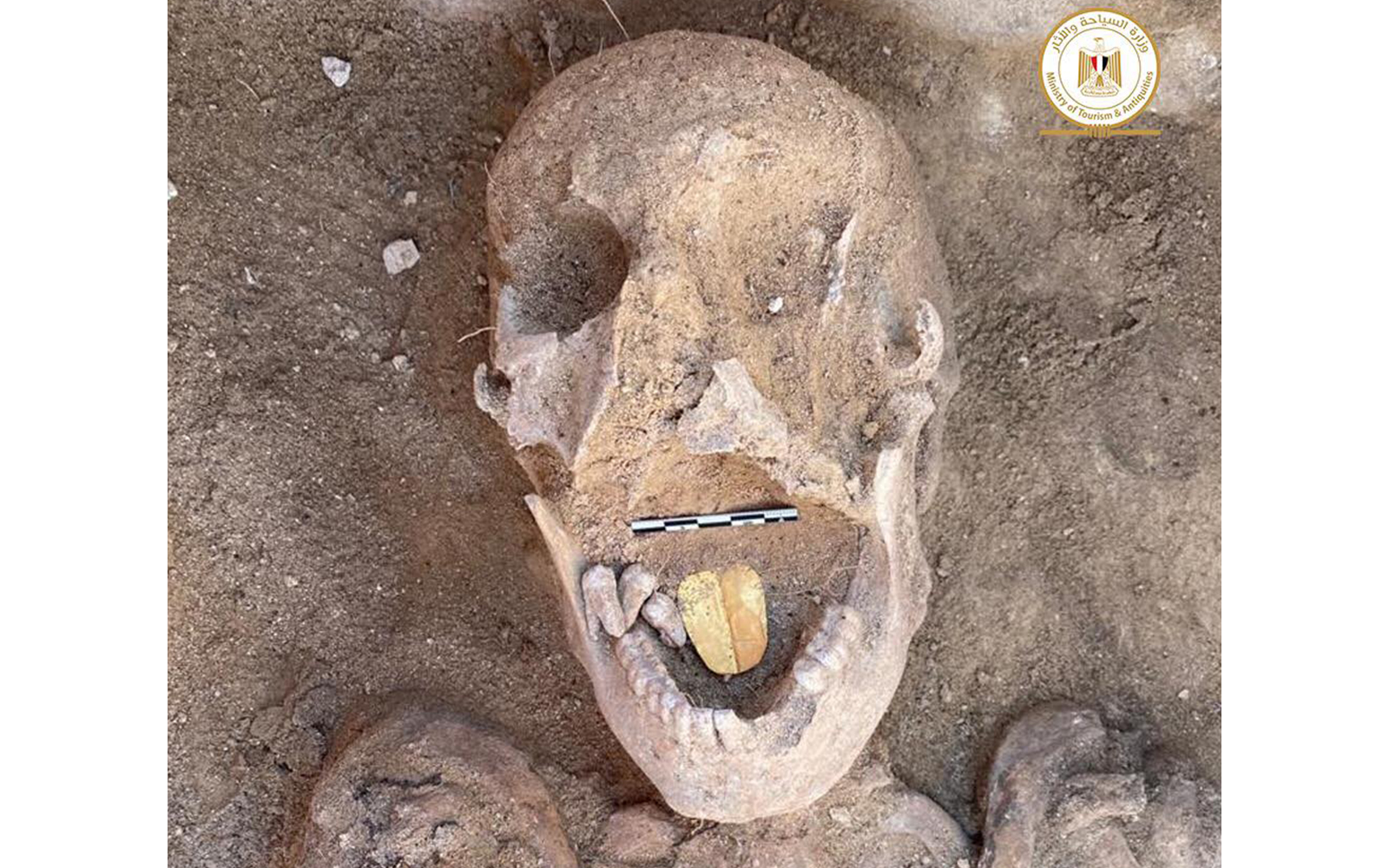 Archaeologists in Egypt unearth an eerie cache of golden-tongued mummies