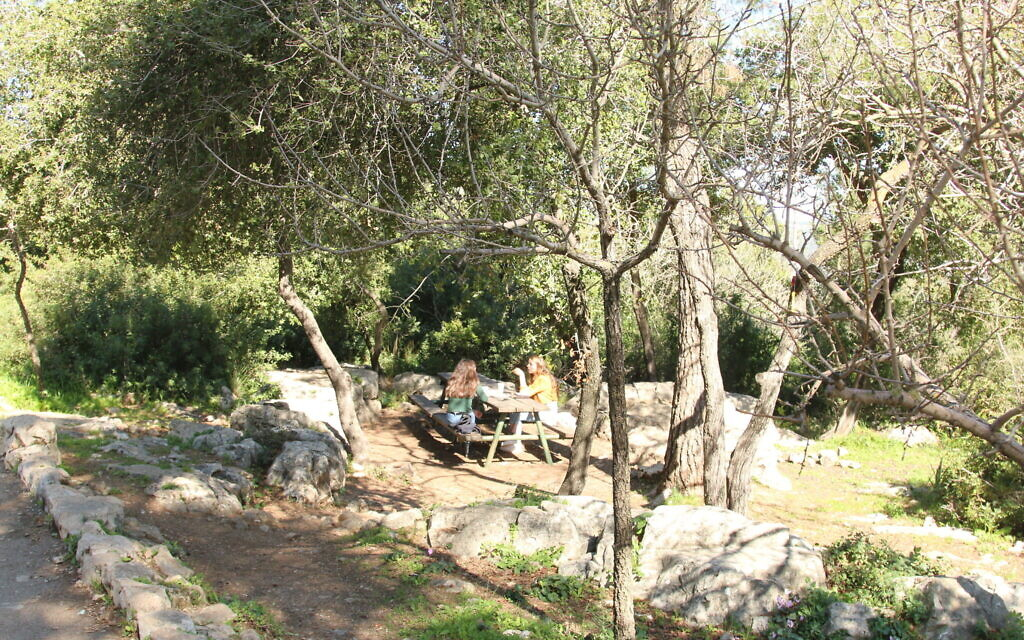 Hikers rest at a table below the accessible path above the Ktalav riverbed. (Shmuel Bar-Am)