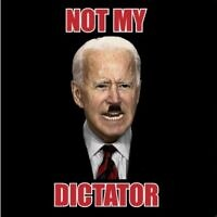 T-shirt emblazoned with the image of US President Joe Biden sporting a Hitler mustache above the words 'Not My Dictator,' on sale on 'The MAGA mall' online store. (Screen capture)