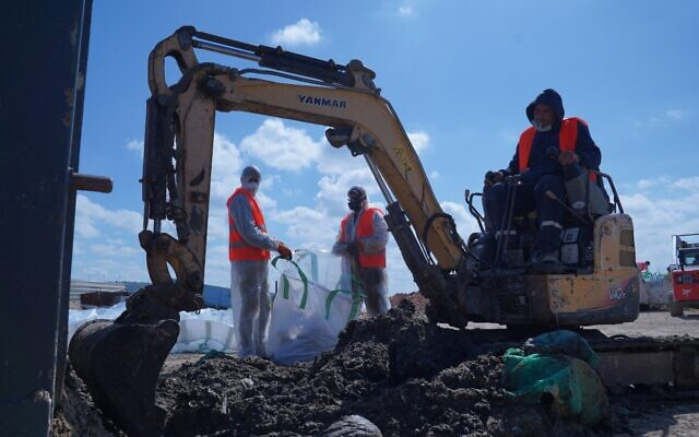 Removing tar from an unspecified beach, February 28, 2021. (Elad Yaakov, Government Presss Office)