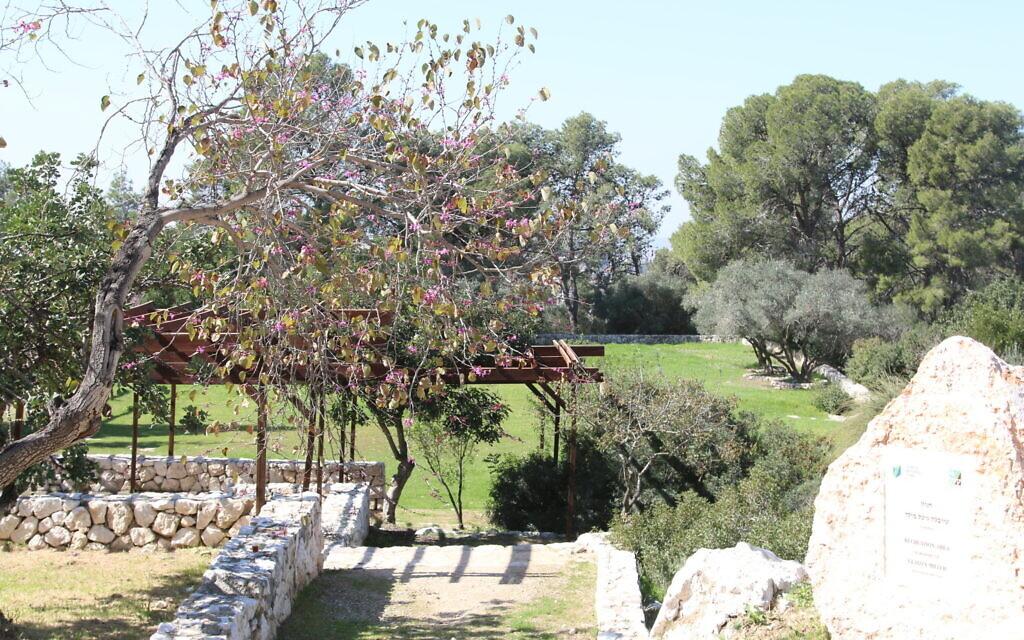 The Gladys Miller Recreation Center. (Shmuel Bar-Am)