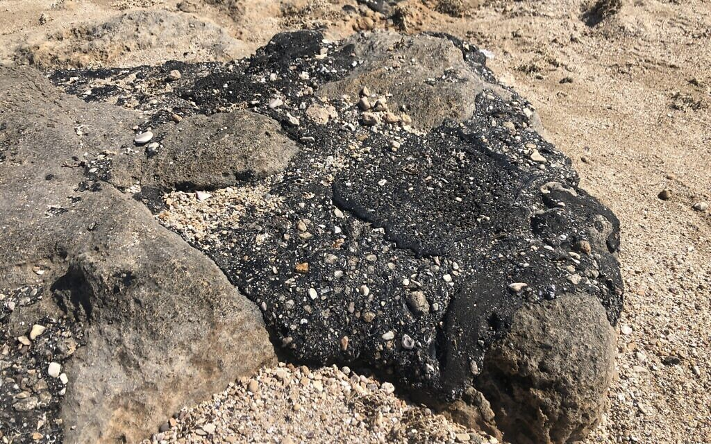 Tar on the rocks, Achziv beach, February 25, 2021. (Sue Surkes/Times of Israel)