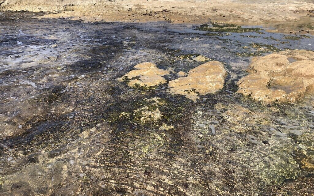 Tar under the water at Achziv beach, February 25, 2021. (Sue Surkes/Times of Israel)